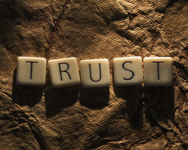 kepercayaan membangun emosi positif dan repeat order